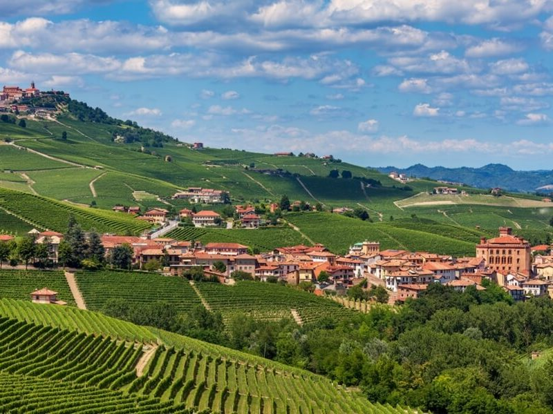 barolo wineries tour castle photo
