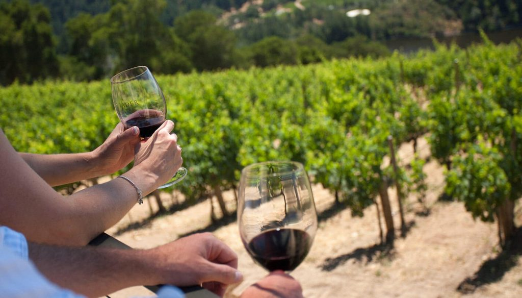 Barolo and Barbaresco wine tour 2 days last minute trip