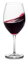 glass of langhe red wine
